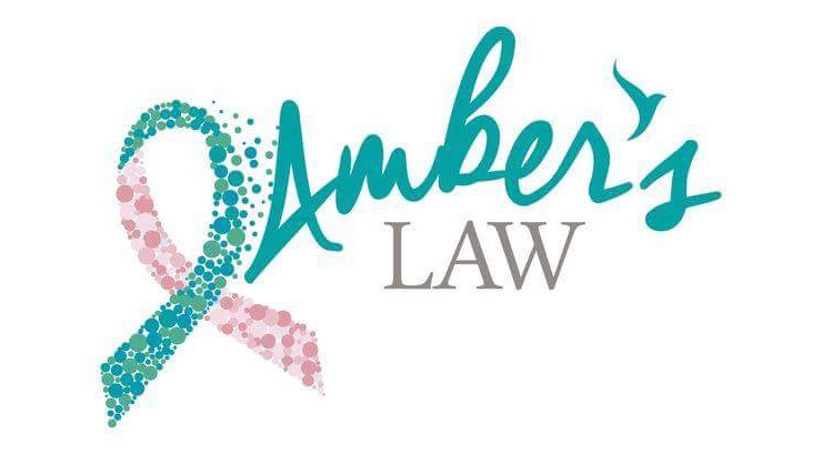 Ambers Law Charity Logo